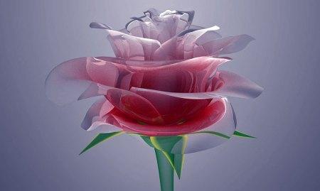 rosa-cristal