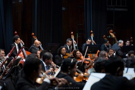 German Cáceres en concierto el 26 de septiembre, 2019. Fotografía: René Figueroa.